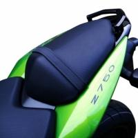 Poignée Passager Pour Kawasaki Z750 Z1000